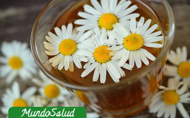 Bebidas naturales para el bienestar